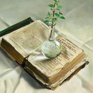 Bijbel met plant
